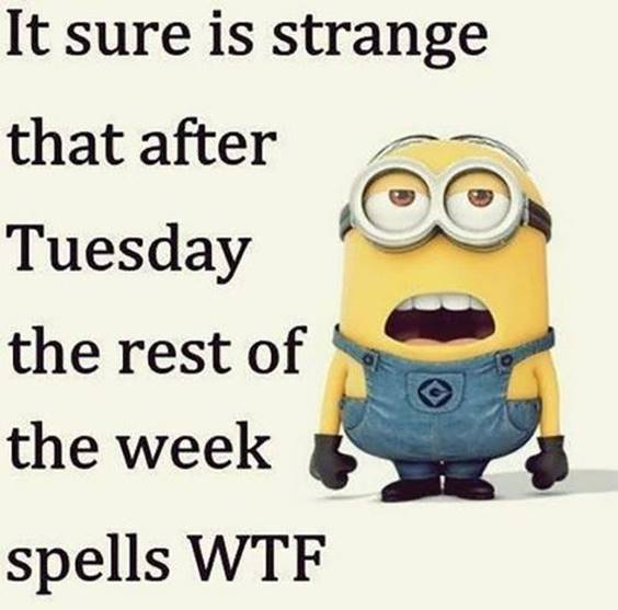 45 Hilariously Funny Minion Pictures With Quotes 21