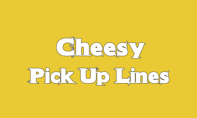 Cheesy Pick Up Lines Funny Phrases