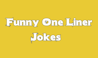 Short Funny One Liner Jokes