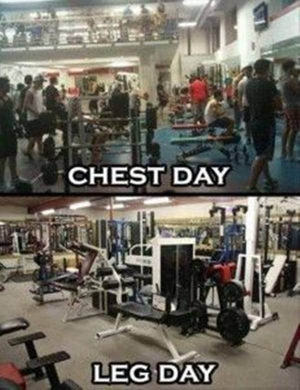 motivational workout quotes funny fitness fun quotes