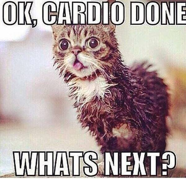 funny motivation and inspirational fitness quotes