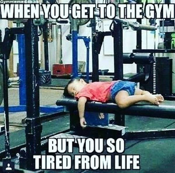 funny motivational quotes and funny fitness quotes
