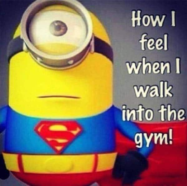 funny workout quotes and funny gym quotes