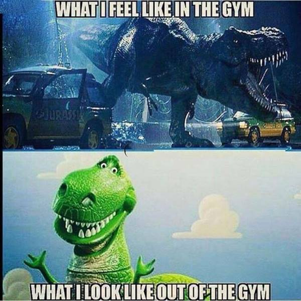 funny workout quotes and funny motivational gym quotes