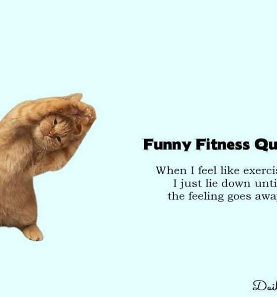 Funny Fitness Quotes and Funny Exercise Gym Memes