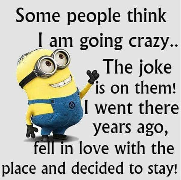 104 Funny Short Sayings To Brighten Up Your Day 28 crazy thoughts quotes, funny quote for today, quotes about having fun
