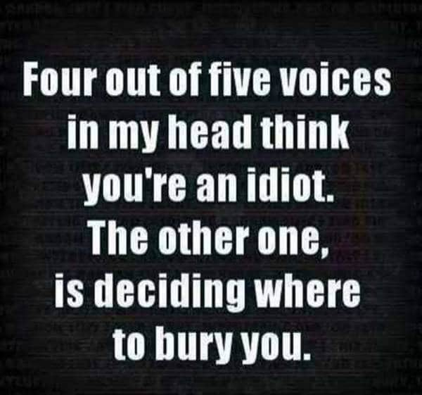 104 Funny Short Sayings To Brighten Up Your Day | funny humour quotes, funny insightful quotes, funny inspirational quotes sayings