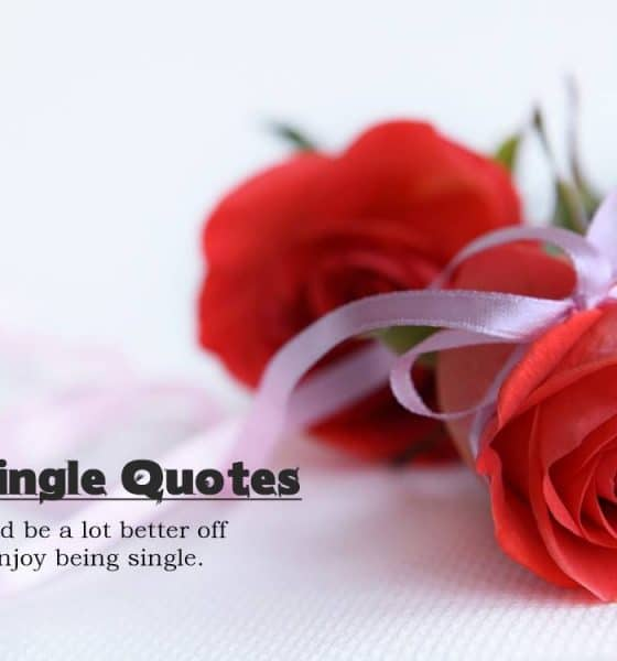 Being Single Quotes Why Being Single Is The Best
