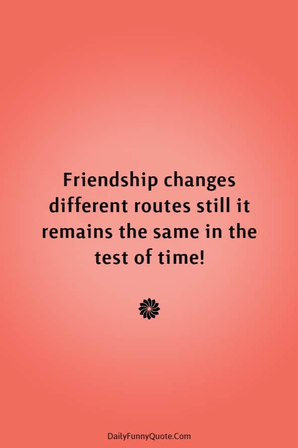 45 Best Friend Quotes Cute Friendship Thoughts | best friend quotes, friend quotes, quotes about friends