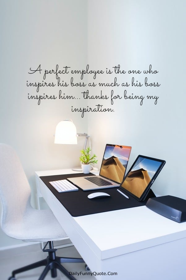 115 Appreciation Quotes for Boss Managers | Boss day  quotes, Thank you boss quotes, Thank you boss