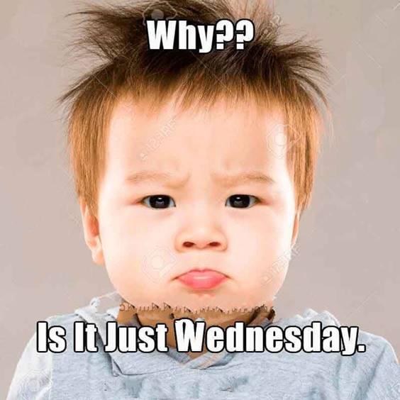 Hilarious Wednesday Memes