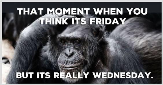 Best Wednesday Meme
