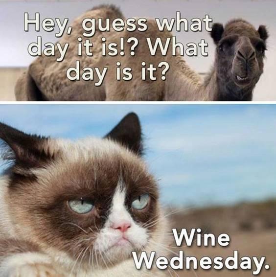 Best Wednesday Memes for Work