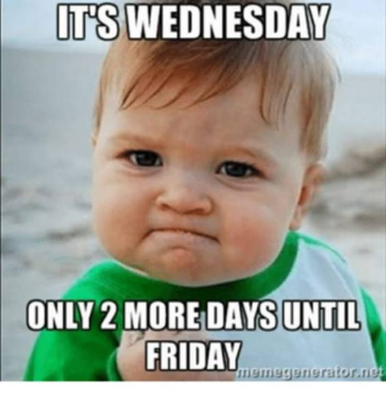 Wednesday Memes School