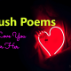 Crush Poems