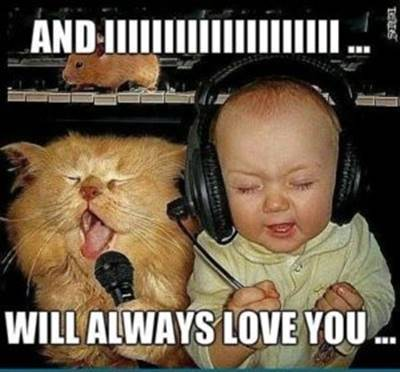 """40 Cute Funny Love Memes Images to Your Love Hilarious I Love You Meme - """"And IIIIIIIIIIIIIIIIIIII… Will always love you…"""""""
