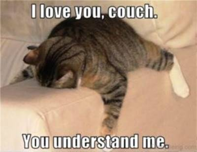 """40 Cute Funny Funny Love You Memes - """"I love you, couch. You understand me."""""""