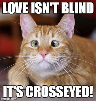 """40 Cute Funny Funniest Love Memes Pictures for Husband-Wife - """"Love isn't blind it's crosseyed!"""""""