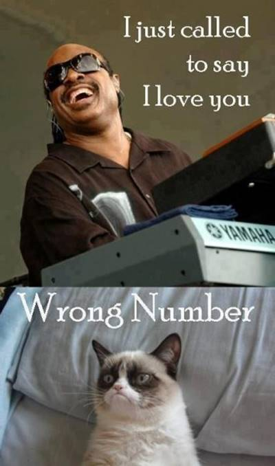 """40 Cute Funny Love Memes Amazingly cute and funny dog love meme and get hilarious responses - """"I just called to say I love you wrong number."""""""