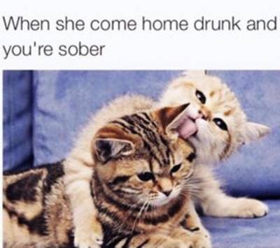 """40 Cute Funny Love Memes Images to Your Love I love you memes funny - """"When she come home drunk and you're sober"""""""