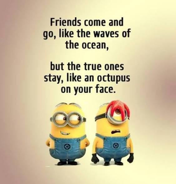 Strange Friendship That One Friend Quotes For Classmates