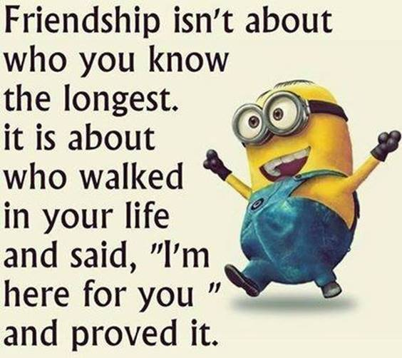 New Friend Quotes About Crazy Friends And Sayings