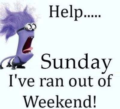 Sunday Funday Quotes Images - Help... Sunday I've run out of the weekend!.