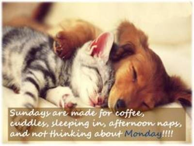 Happy Weekend Sunday Quotes Facebook - Sundays are made for coffee, cuddles, sleeping in, afternoon naps, and not thinking about Monday.
