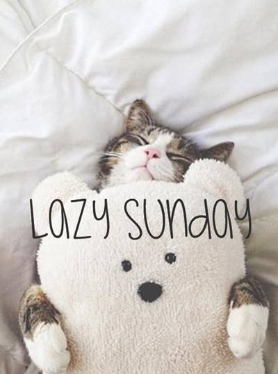 Funny Sunday Sayings