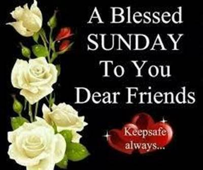 Happy Sunday Funny Quotes - A blessed Sunday to you dear friends. Keep safe always.