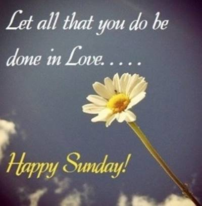 Lazy funny Sunday Quotes images - let all that you do be done in love... Happy Sunday!