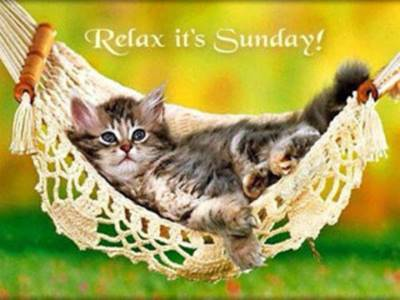 Funny Sunday Afternoon Quotes - Relax its Sunday.
