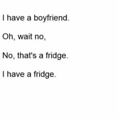 45 Single Memes I Have A Fridge Meme - I have a boyfriend. Oh, wait no, no, that's the fridge. I have a fridge.
