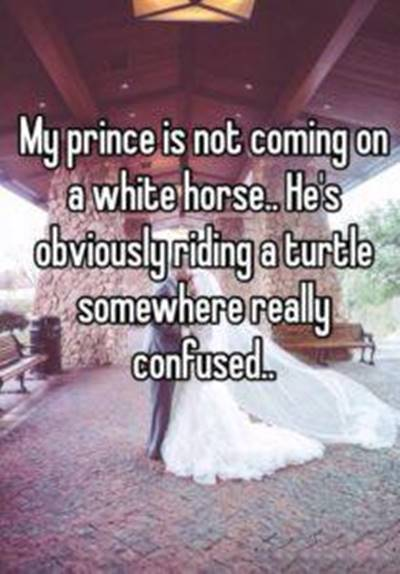 45 Single Memes To Make Your Lonely Heart Smile I'm Awesome Meme - My prince is not coming on a white horse.. He's obviously riding a turtle somewhere really confused.