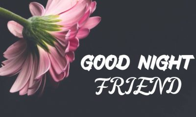 good night messages for friends text quotes with images