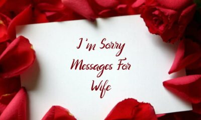 What to Write Sorry Messages For Wife Notes Quotes