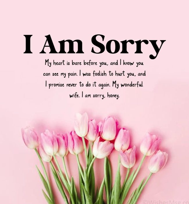 romantic sorry messages for wife