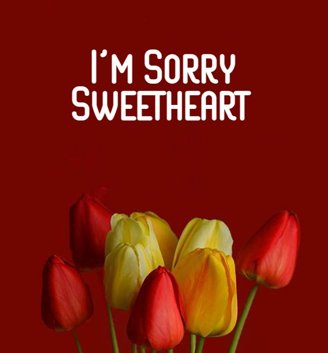 romantic sorry messages