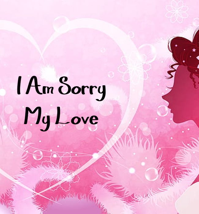 sorry message for wife