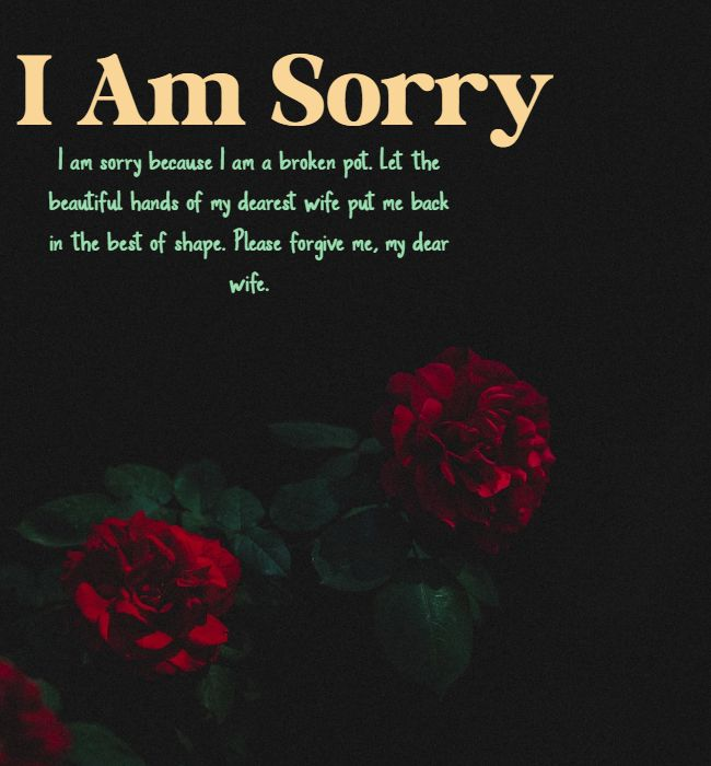 sorry quotes for wife
