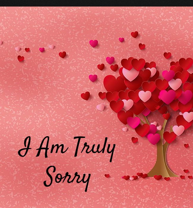 what to write in a sorry card to wife