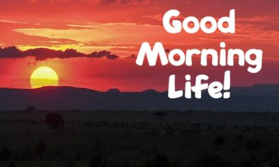 Beautiful Good Morning Life Images And Positive Quotes About Life