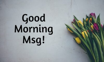 Good Morning Msg With Pictures Quotes Wishes Messages