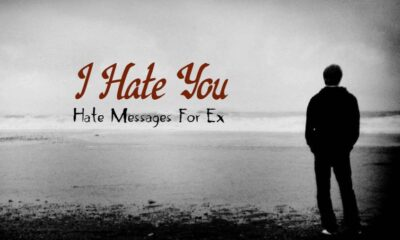 I Hate You Messages For Ex Hate You Quotes For Breakup