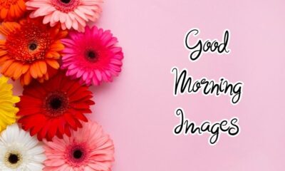 Special Good Morning Images With wishes And Quotes About Motivation