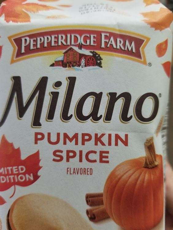 funny fall memes Pumpkin Spice Memes Images And Funny Quotes