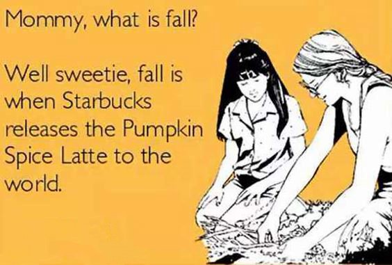 pumpkin girl meme Pumpkin Spice Memes Images And Funny Quotes